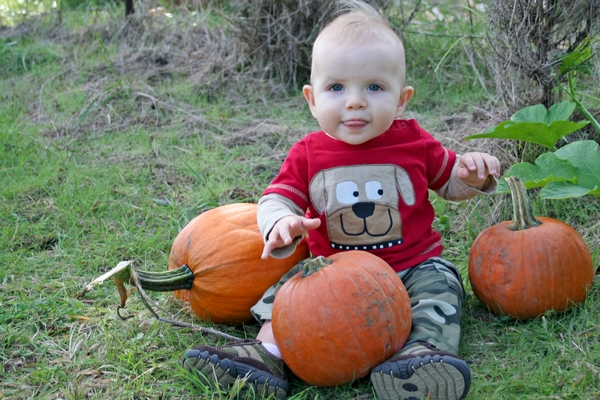 image of baby sitting in a pumpkin patch